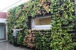 BGreen-it Living Wall
