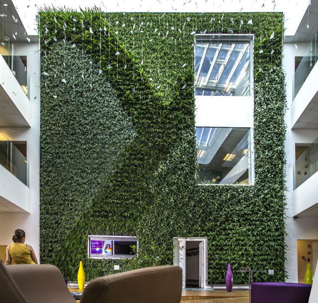 Plantevæg indendørs privat